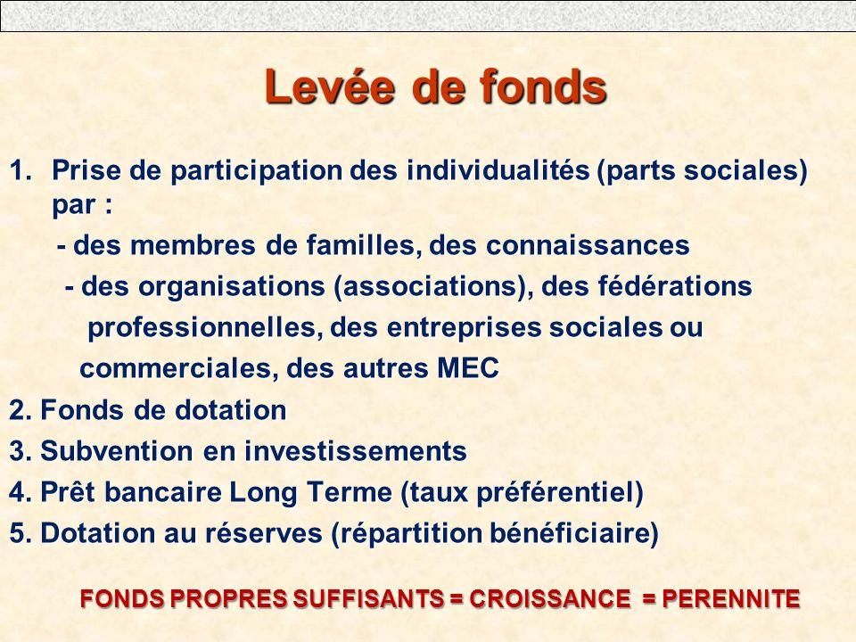 Levée de fonds Levée de fonds 1.Prise de participation des individualités (parts sociales) par : - des membres de familles, des connaissances - des me