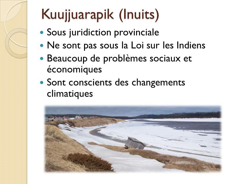 Kuujjuarapik (Inuits) Sous juridiction provinciale Ne sont pas sous la Loi sur les Indiens Beaucoup de problèmes sociaux et économiques Sont conscient
