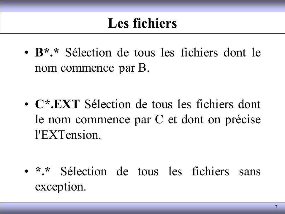 Les fichiers B*.* Sélection de tous les fichiers dont le nom commence par B. C*.EXT Sélection de tous les fichiers dont le nom commence par C et dont