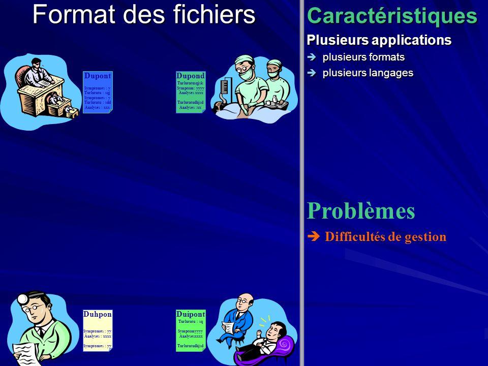 Format des fichiers Caractéristiques Plusieurs applications plusieurs formats plusieurs formats plusieurs langages plusieurs langages Problèmes Diffic