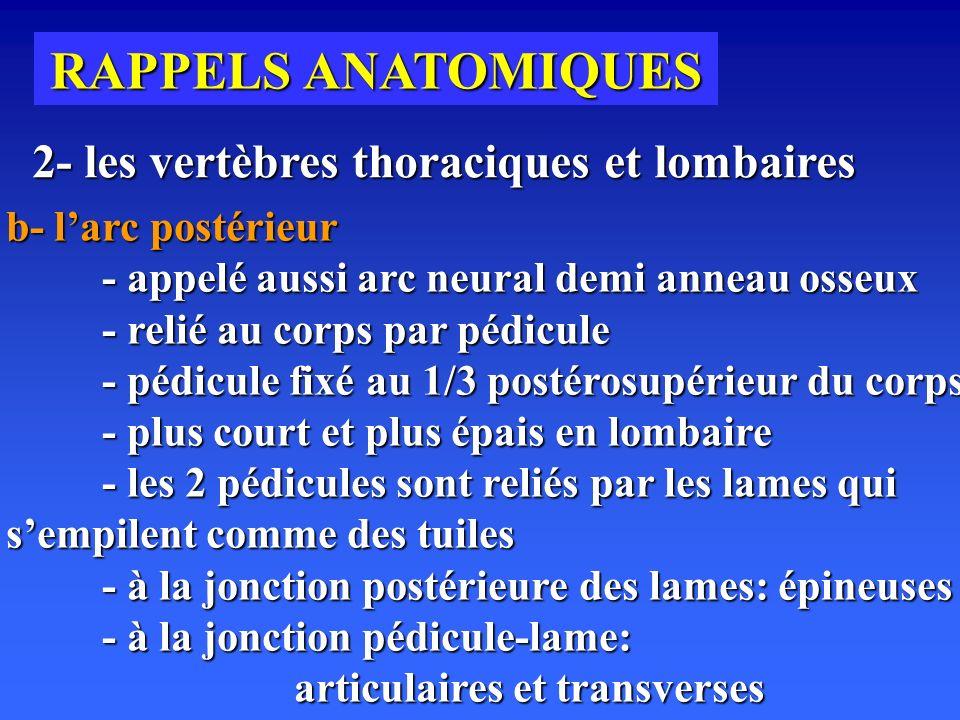 RAPPELS ANATOMIQUES 2- les vertèbres thoraciques et lombaires b- larc postérieur - appelé aussi arc neural demi anneau osseux - relié au corps par pédicule - pédicule fixé au 1/3 postérosupérieur du corps - plus court et plus épais en lombaire - les 2 pédicules sont reliés par les lames qui sempilent comme des tuiles - à la jonction postérieure des lames: épineuses - à la jonction pédicule-lame: articulaires et transverses