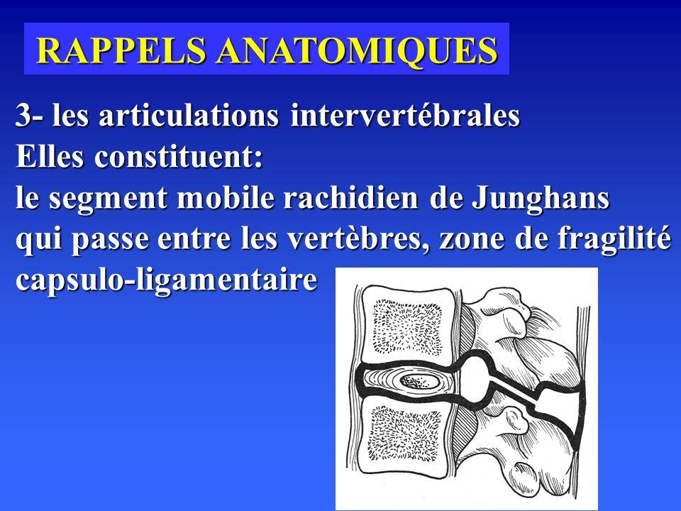 RAPPELS ANATOMIQUES 3- les articulations intervertébrales Elles constituent: le segment mobile rachidien de Junghans qui passe entre les vertèbres, zone de fragilité capsulo-ligamentaire