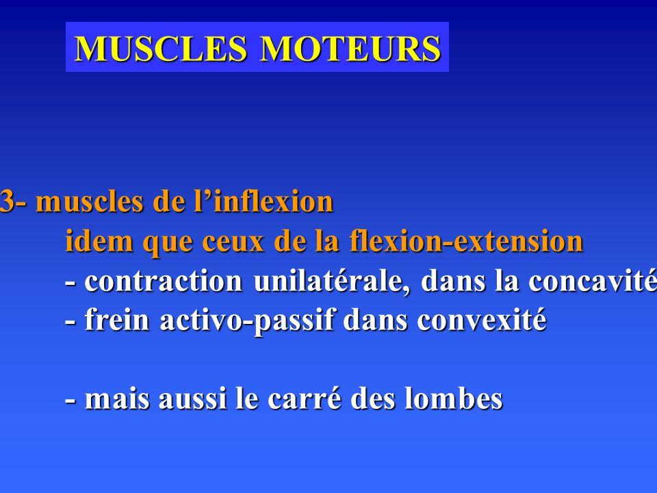 MUSCLES MOTEURS 3- muscles de linflexion idem que ceux de la flexion-extension - contraction unilatérale, dans la concavité - frein activo-passif dans convexité - mais aussi le carré des lombes