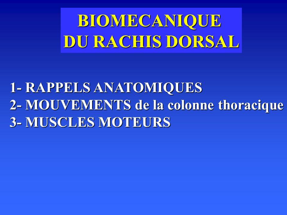 BIOMECANIQUE DU RACHIS DORSAL 1- RAPPELS ANATOMIQUES 2- MOUVEMENTS de la colonne thoracique 3- MUSCLES MOTEURS