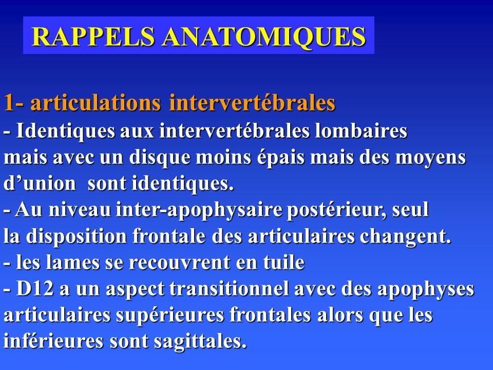 RAPPELS ANATOMIQUES 1- articulations intervertébrales - Identiques aux intervertébrales lombaires mais avec un disque moins épais mais des moyens dunion sont identiques.