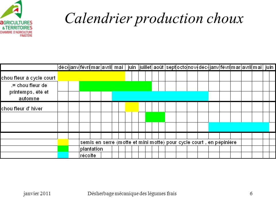 janvier 2011Désherbage mécanique des légumes frais6 Calendrier production choux