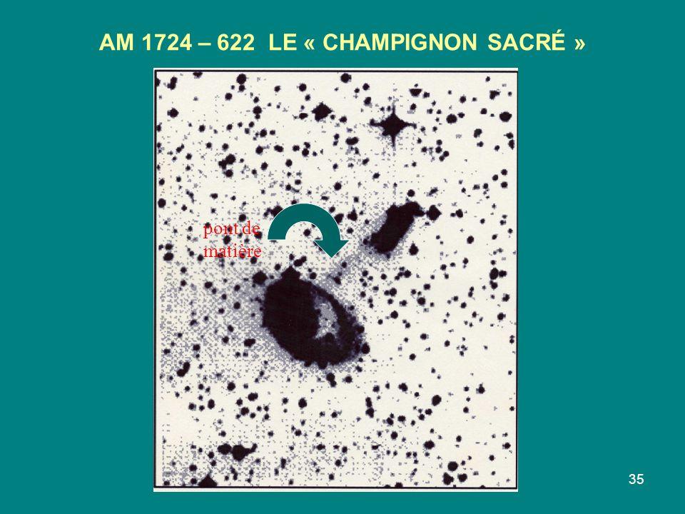 35 AM 1724 – 622 LE « CHAMPIGNON SACRÉ » pont de matière