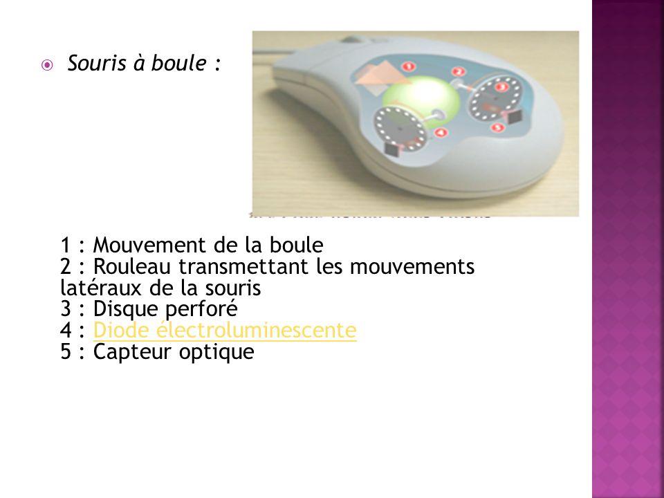La souris (en anglais «mouse» ou «miche») est un périphérique de pointage (en anglais painting devise) servant à déplacer un curseur sur l écran et permettant de sélectionner, déplacer, manipuler des objets grâce à des boutons.
