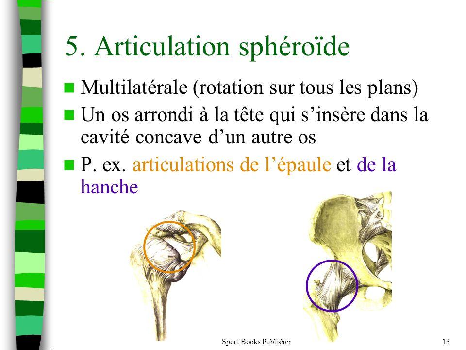 Sport Books Publisher13 5. Articulation sphéroïde Multilatérale (rotation sur tous les plans) Un os arrondi à la tête qui sinsère dans la cavité conca