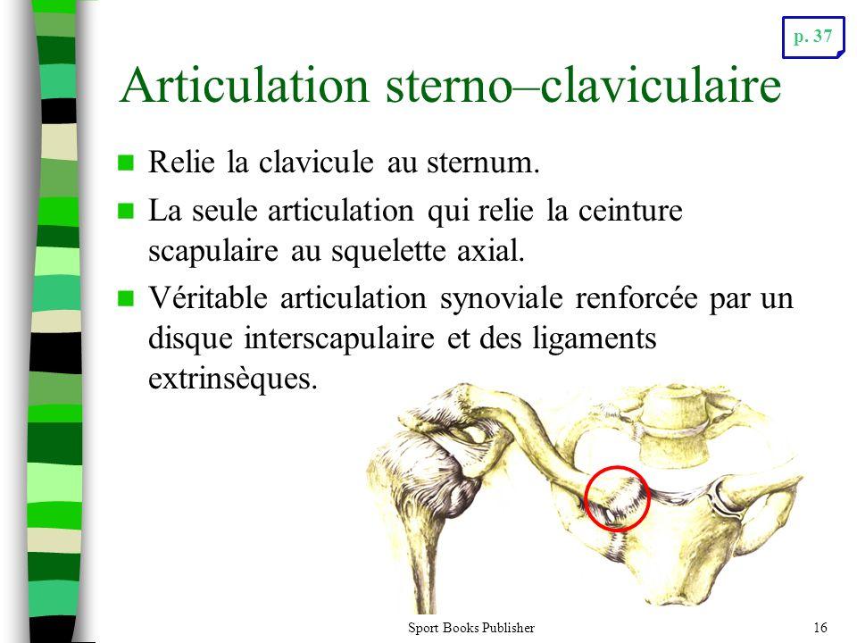 Sport Books Publisher16 Articulation sterno–claviculaire Relie la clavicule au sternum.