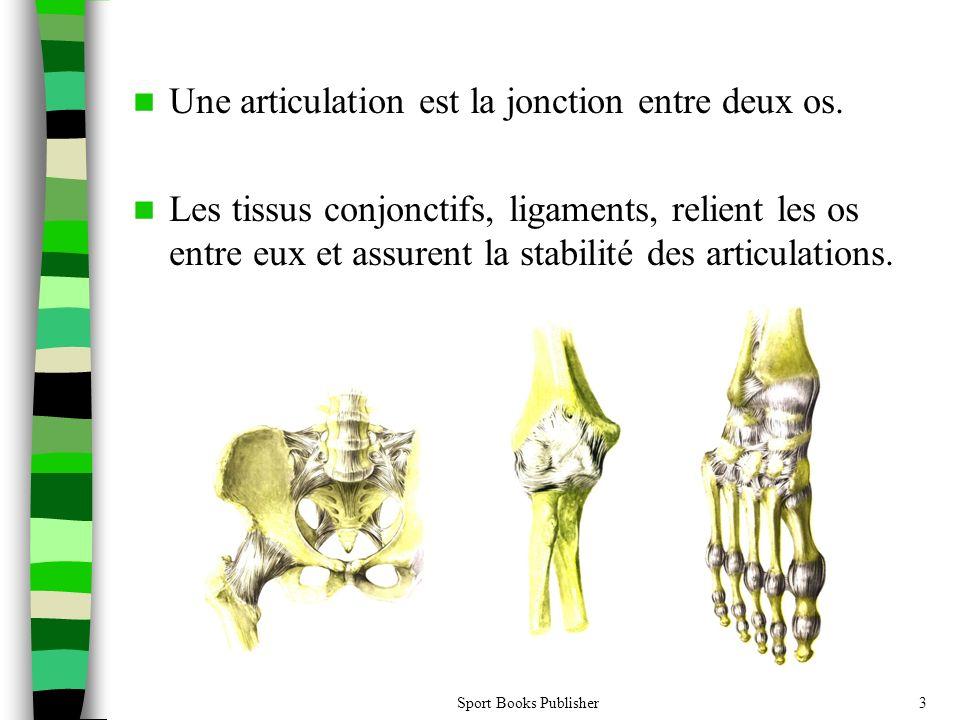 Sport Books Publisher3 Une articulation est la jonction entre deux os. Les tissus conjonctifs, ligaments, relient les os entre eux et assurent la stab