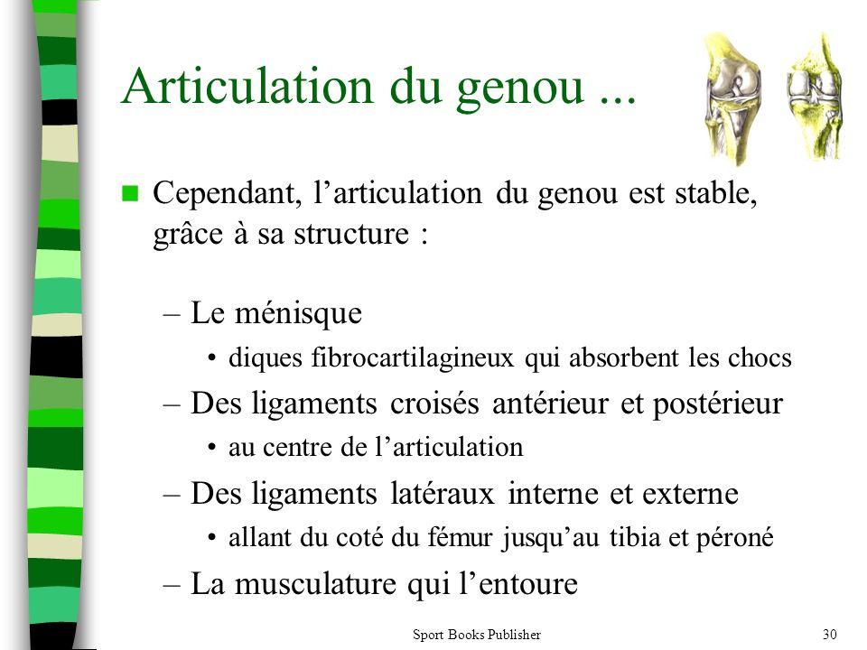 Sport Books Publisher30 Articulation du genou... Cependant, larticulation du genou est stable, grâce à sa structure : –Le ménisque diques fibrocartila