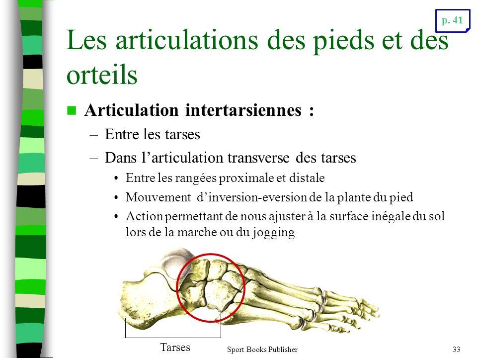 Sport Books Publisher33 Les articulations des pieds et des orteils Articulation intertarsiennes : –Entre les tarses –Dans larticulation transverse des