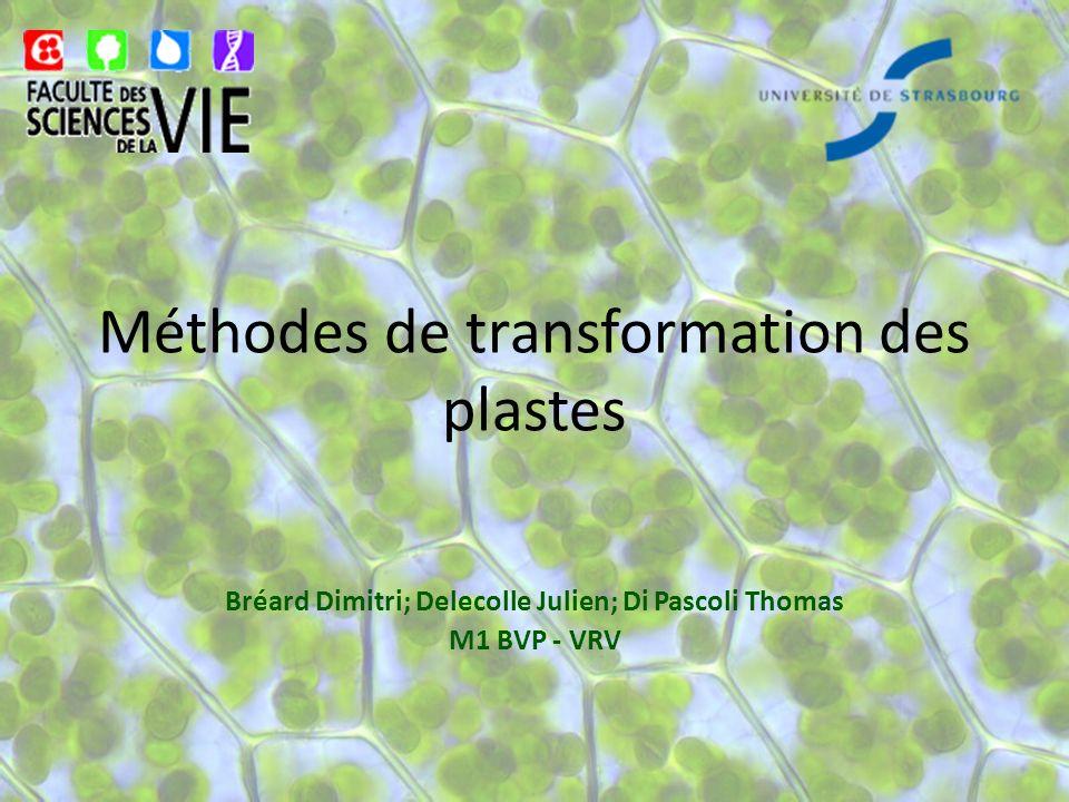 Méthodes de transformation des plastes Bréard Dimitri; Delecolle Julien; Di Pascoli Thomas M1 BVP - VRV