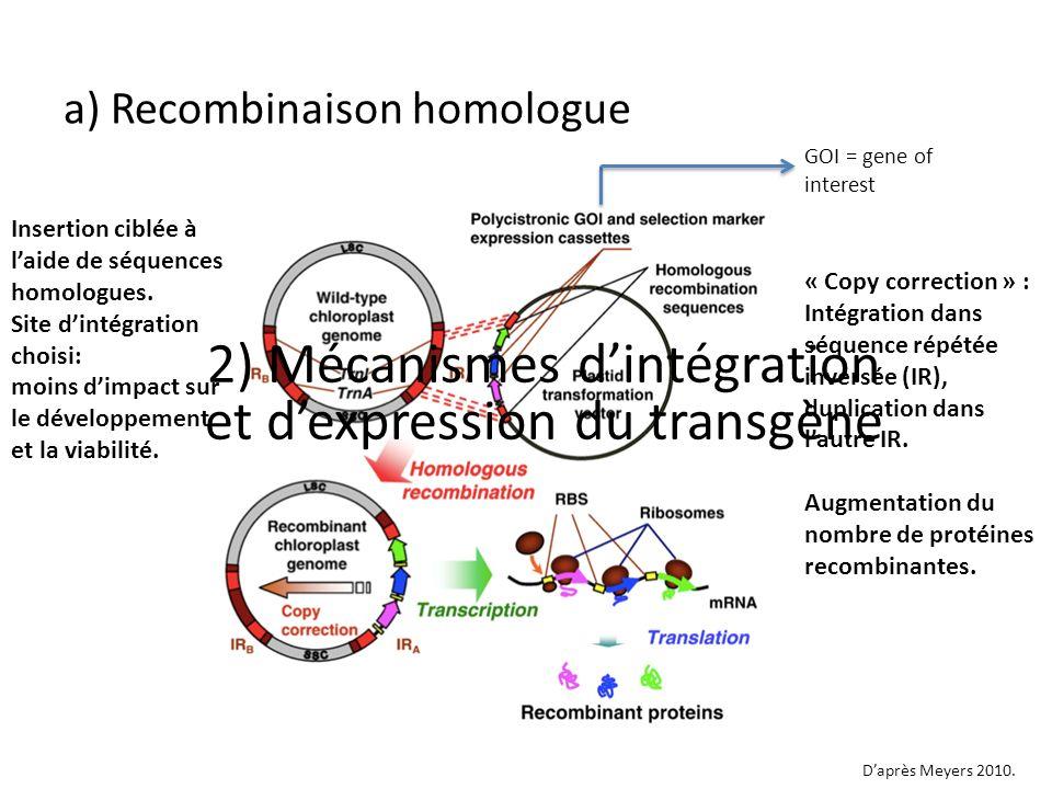 Insertion ciblée à laide de séquences homologues. Site dintégration choisi: moins dimpact sur le développement et la viabilité. « Copy correction » :