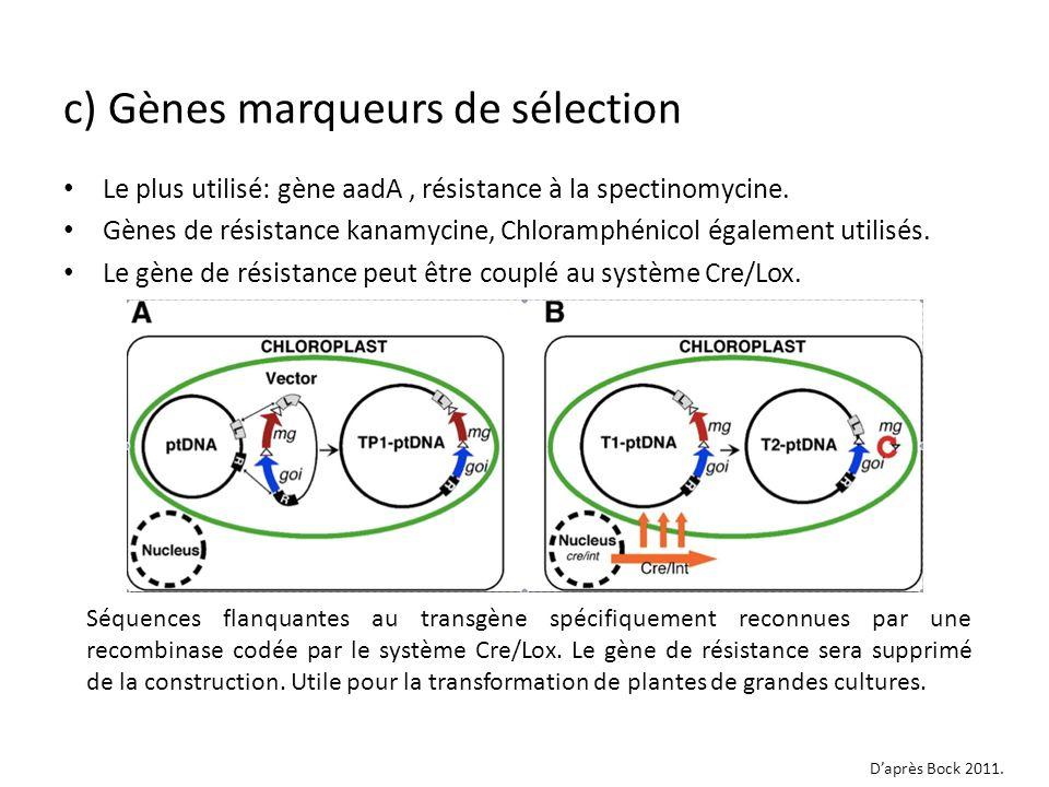 Le plus utilisé: gène aadA, résistance à la spectinomycine. Gènes de résistance kanamycine, Chloramphénicol également utilisés. Le gène de résistance