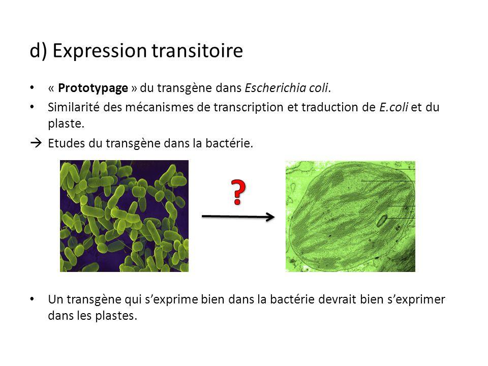 d) Expression transitoire « Prototypage » du transgène dans Escherichia coli. Similarité des mécanismes de transcription et traduction de E.coli et du