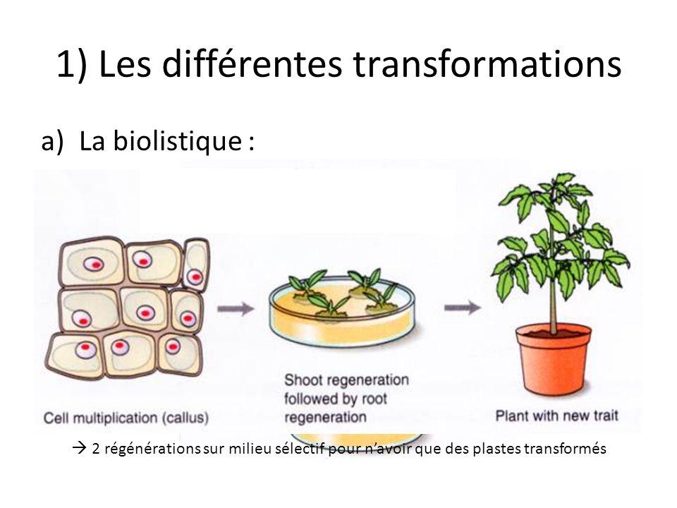 1) Les différentes transformations a)La biolistique : Particules dor ou de tungstène de 0,4 à 1μM de diamètre. Lintégration se fait également dans les