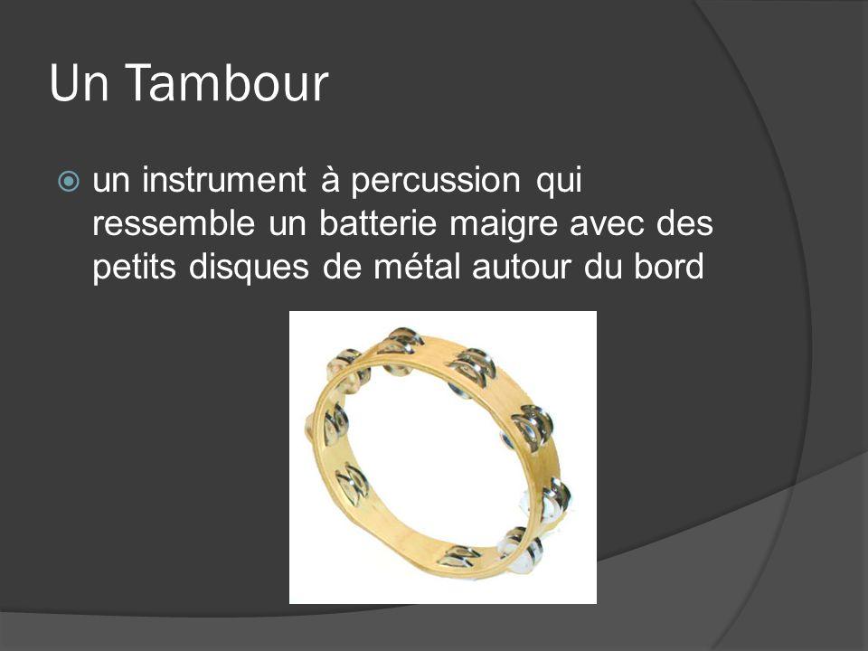 Un Tambour un instrument à percussion qui ressemble un batterie maigre avec des petits disques de métal autour du bord