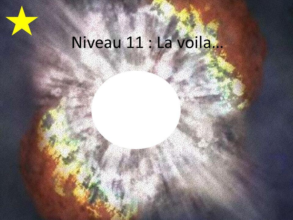 Niveau 11 : La voila…