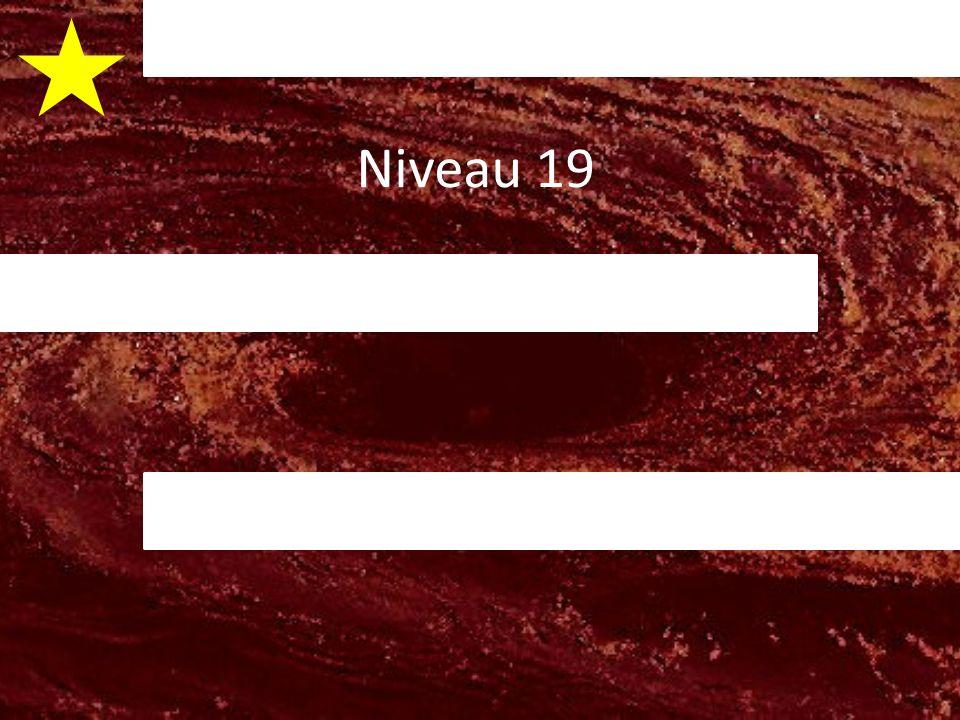 Niveau 19 v v v v