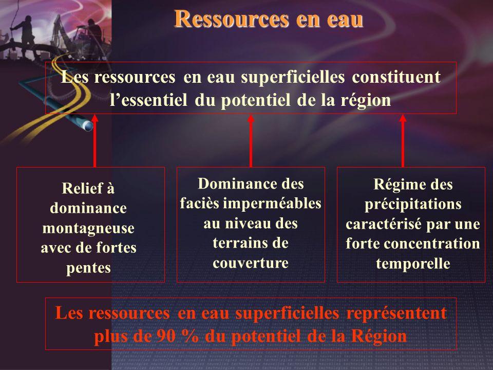Ressources en eau Les ressources en eau superficielles représentent plus de 90 % du potentiel de la Région Relief à dominance montagneuse avec de fort