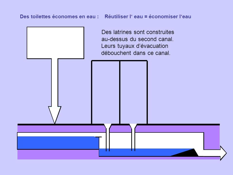 Des toilettes économes en eau : Réutiliser l eau = économiser leau Des latrines sont construites au-dessus du second canal. Leurs tuyaux dévacuation d