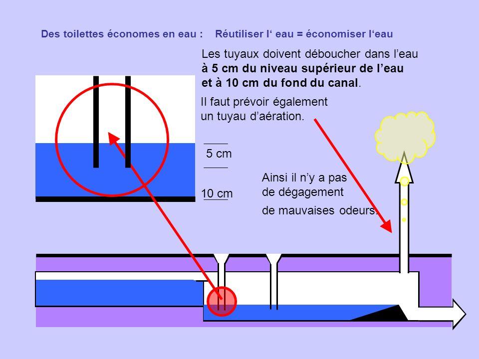 Des toilettes économes en eau : Réutiliser l eau = économiser leau Les tuyaux doivent déboucher dans leau à 5 cm du niveau supérieur de leau et à 10 c