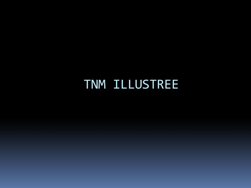 TNM ILLUSTREE