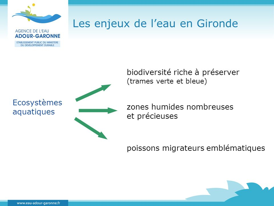 Les enjeux de leau en Gironde biodiversité riche à préserver (trames verte et bleue) Ecosystèmes aquatiques zones humides nombreuses et précieuses poi