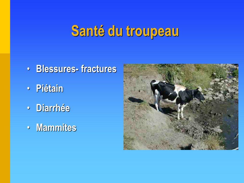 Santé du troupeau Blessures- fractures Blessures- fractures Piétain Piétain Diarrhée Diarrhée Mammites Mammites