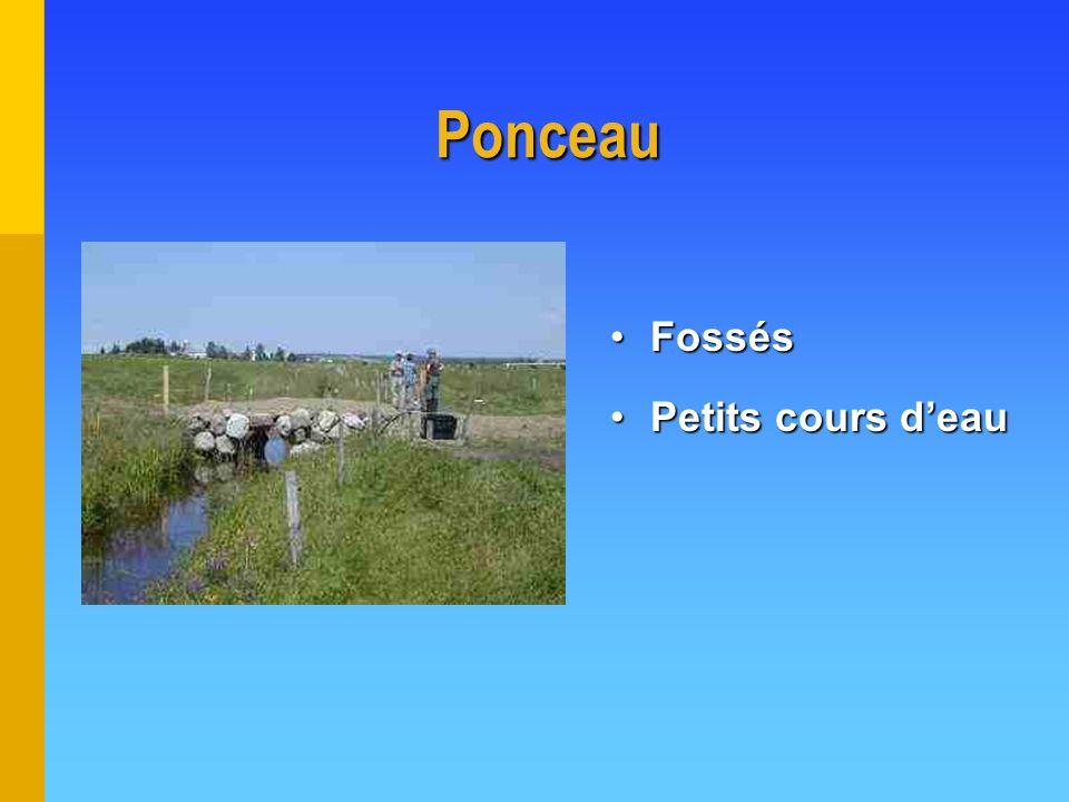 Ponceau FossésFossés Petits cours deauPetits cours deau