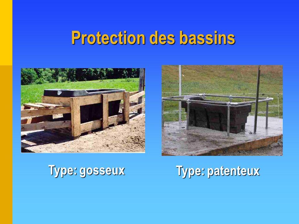 Protection des bassins Type: gosseux Type: patenteux