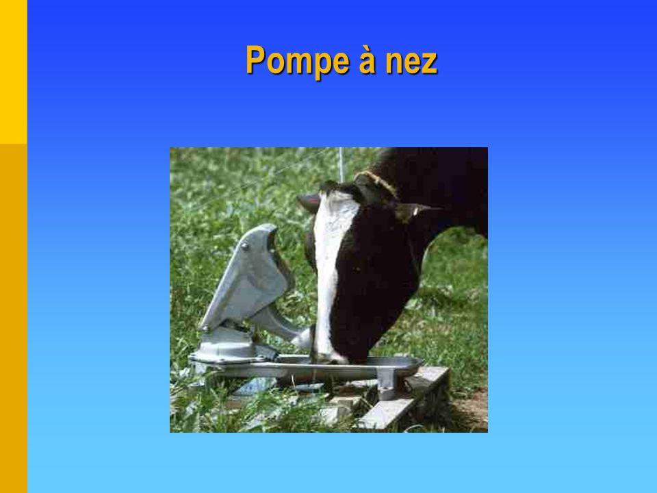 Pompe à nez
