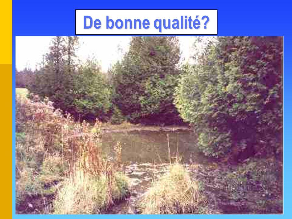 Types de bassins Écologique (récupération) Écologique (récupération) O.K.