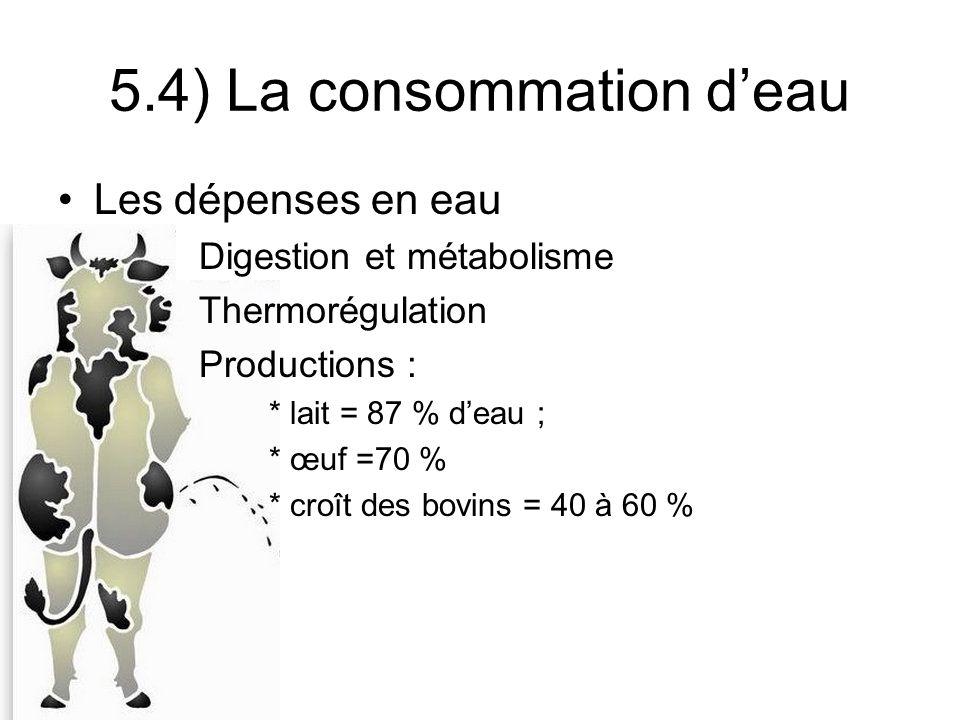Les dépenses en eau Digestion et métabolisme Thermorégulation Productions : * lait = 87 % deau ; * œuf =70 % * croît des bovins = 40 à 60 % 5.4) La consommation deau