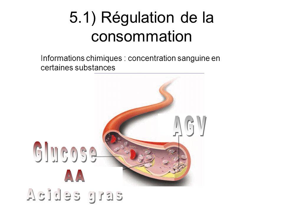 5.1) Régulation de la consommation Information nerveuse