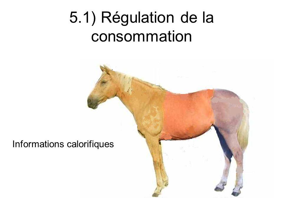 5.1) Régulation de la consommation Stockage dénergie