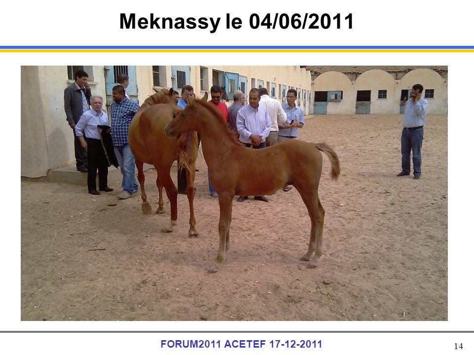 14 FORUM2011 ACETEF 17-12-2011 Meknassy le 04/06/2011