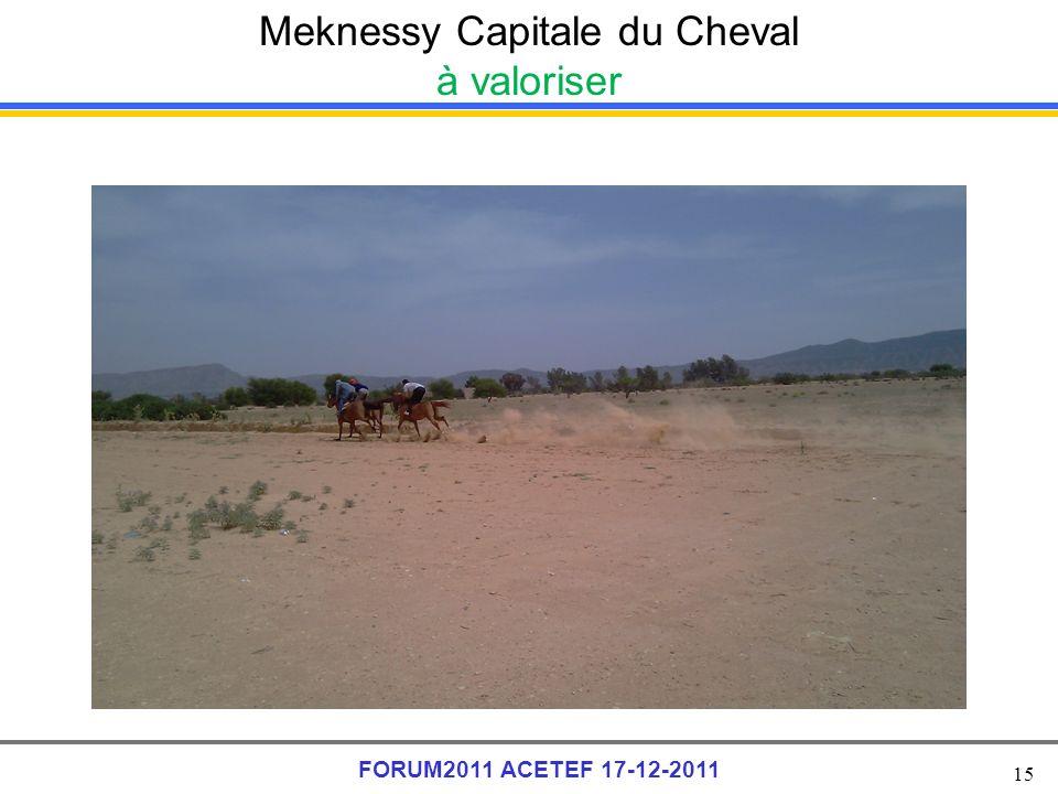 15 FORUM2011 ACETEF 17-12-2011 Meknessy Capitale du Cheval à valoriser