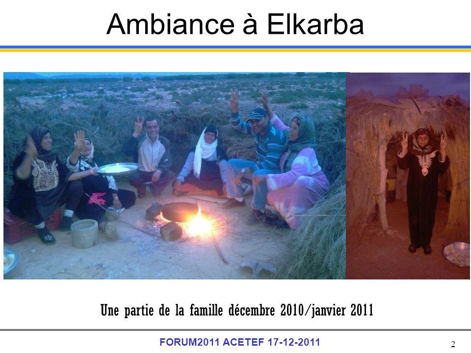 2 FORUM2011 ACETEF 17-12-2011 Ambiance à Elkarba Une partie de la famille décembre 2010/janvier 2011