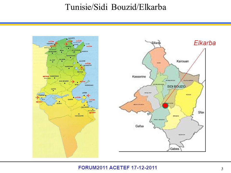 3 FORUM2011 ACETEF 17-12-2011 Tunisie/Sidi Bouzid/Elkarba Elkarba