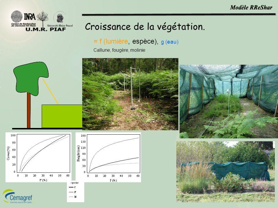 Croissance de la végétation. = f (lumière, espèce), g (eau) Callune, fougère, molinie