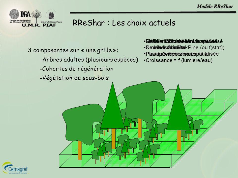RReShar : Les choix actuels 3 composantes sur « une grille »: -Arbres adultes (plusieurs espèces) -Cohortes de régénération -Végétation de sous-bois M