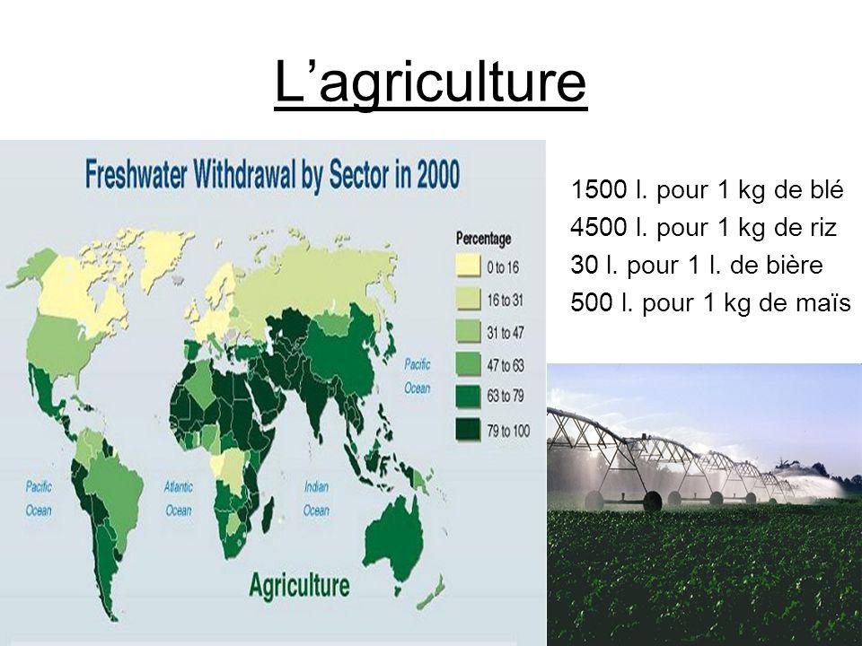 Lagriculture 1500 l.pour 1 kg de blé 4500 l. pour 1 kg de riz 30 l.