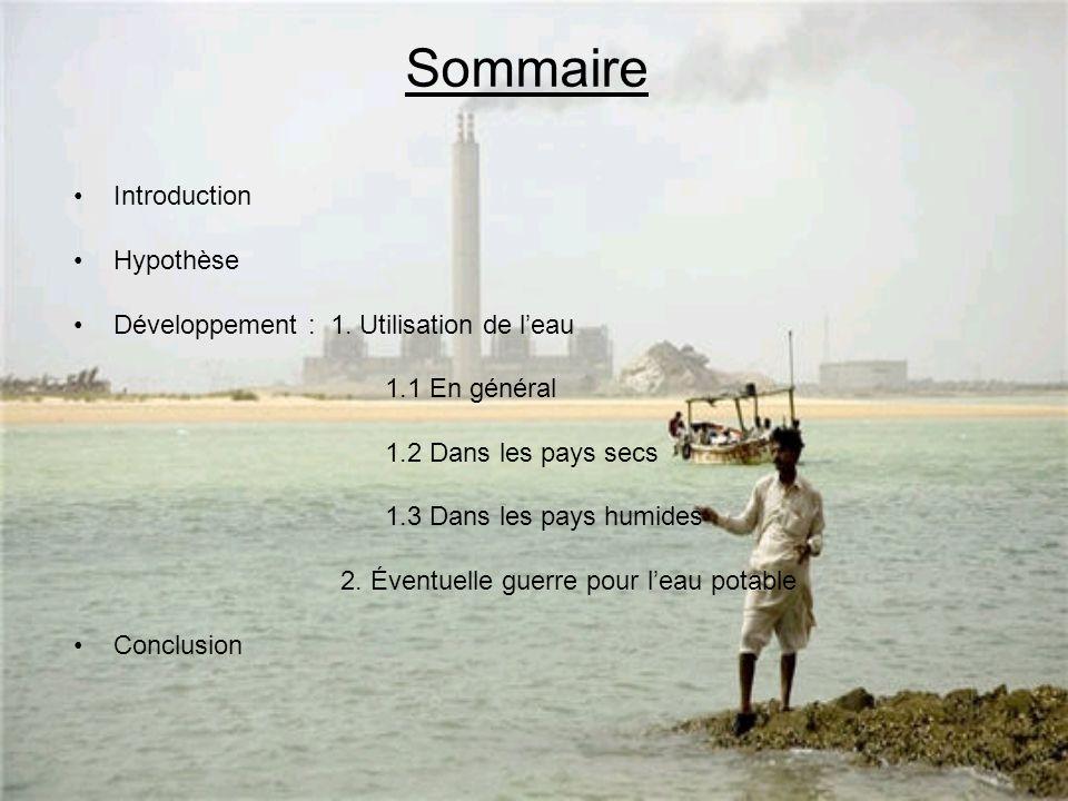 Sommaire Introduction Hypothèse Développement : 1.