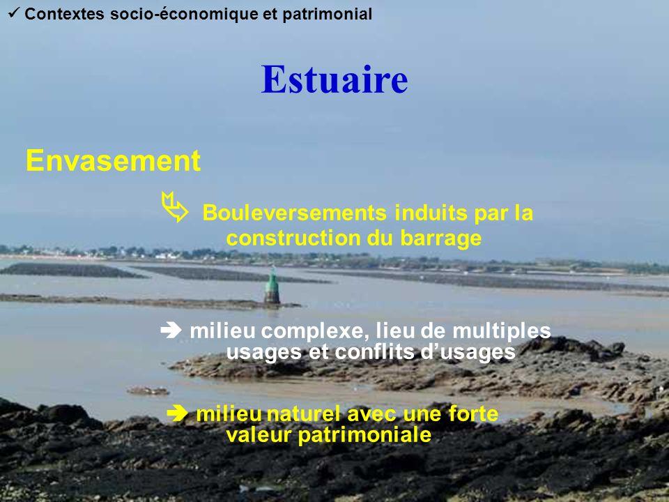Estuaire Envasement Bouleversements induits par la construction du barrage milieu complexe, lieu de multiples usages et conflits dusages milieu nature