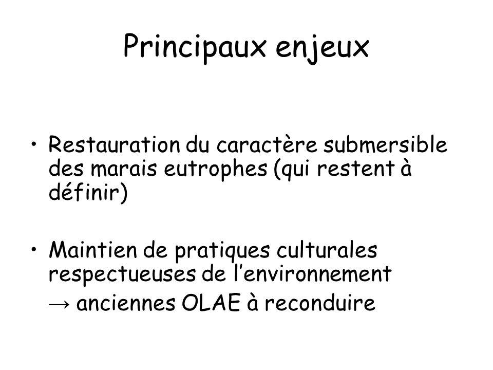 Principaux enjeux Restauration du caractère submersible des marais eutrophes (qui restent à définir) Maintien de pratiques culturales respectueuses de