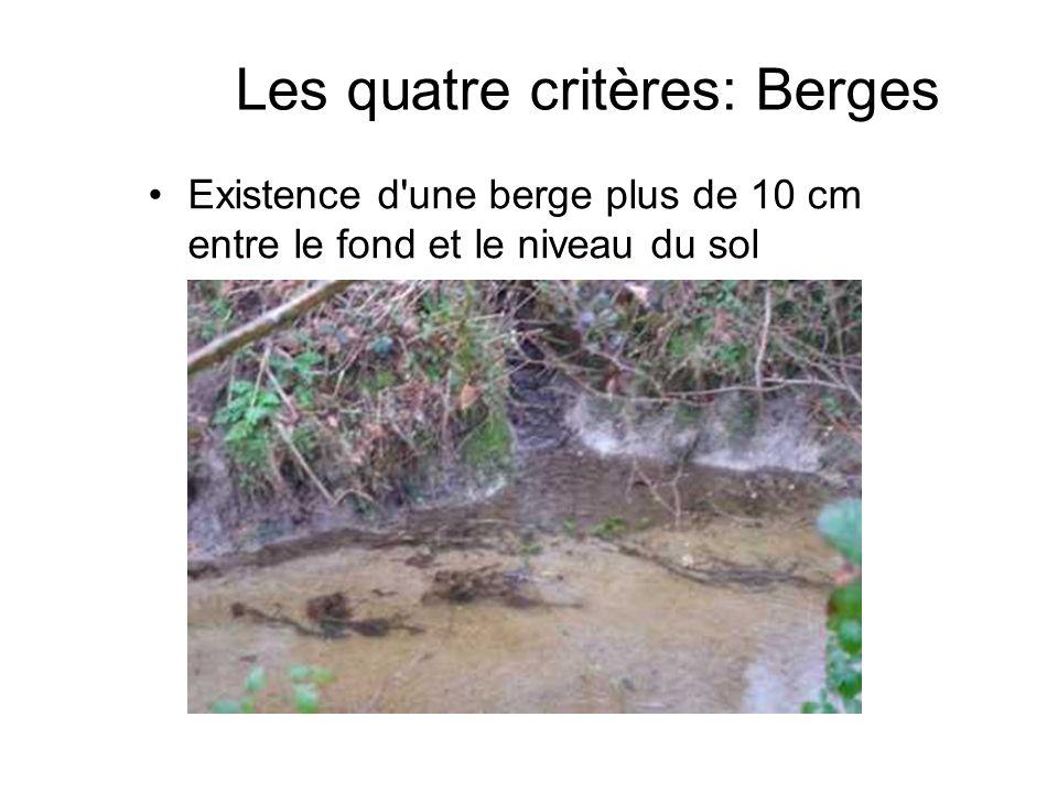 Existence d'une berge plus de 10 cm entre le fond et le niveau du sol Les quatre critères: Berges