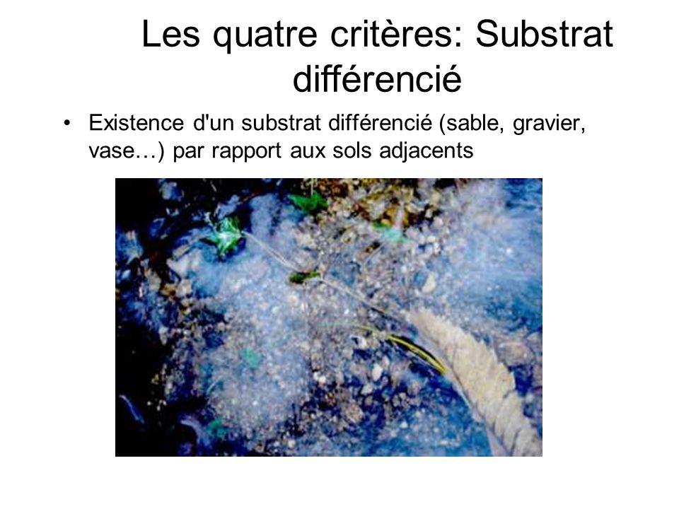 Existence d'un substrat différencié (sable, gravier, vase…) par rapport aux sols adjacents Les quatre critères: Substrat différencié